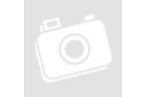 Testi-lelki egyensúly ganoderma segítségével